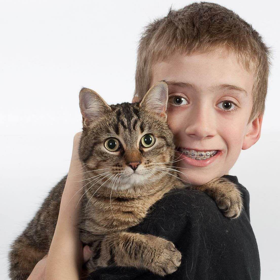 Kedi tutma