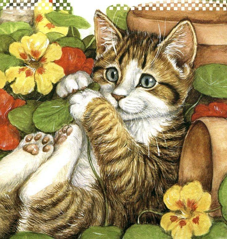 kedi-cicek-hikmet-akinci