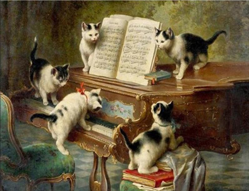 kedi ve müzik